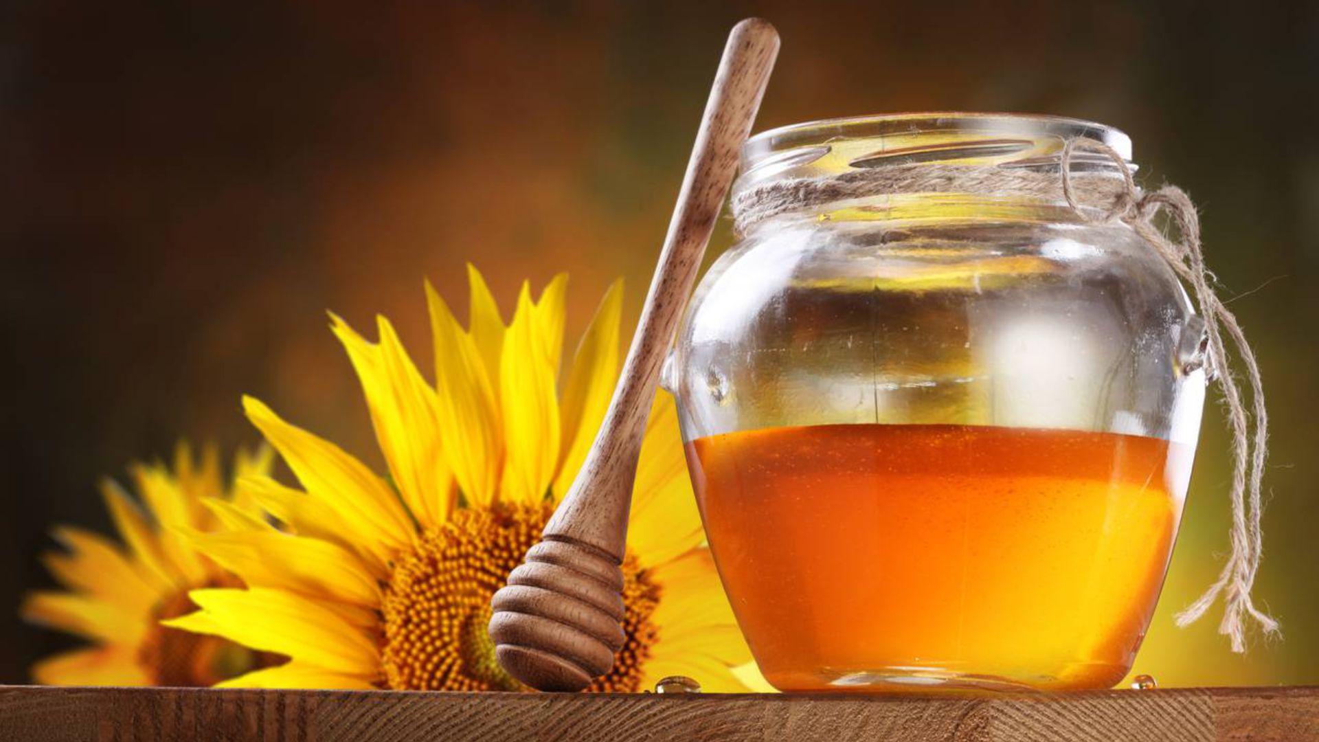mierea de floarea-soarelui
